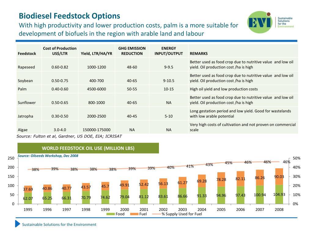 Biodiesel Feedstock Options