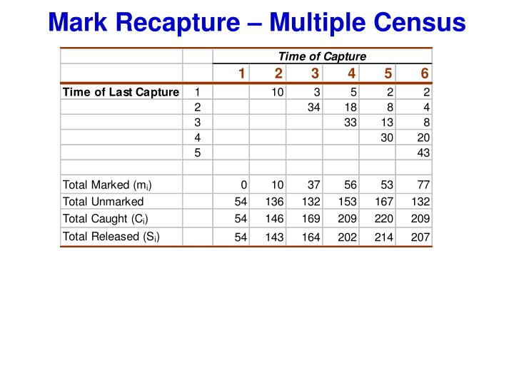 Mark Recapture – Multiple Census