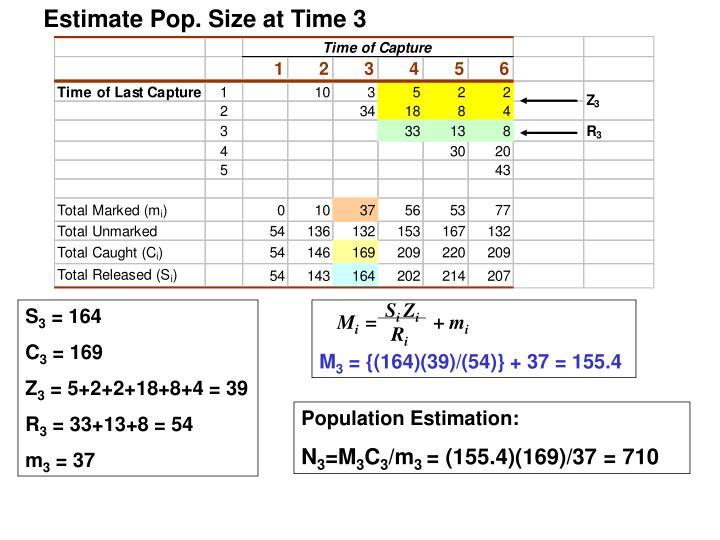 Estimate Pop. Size at Time 3