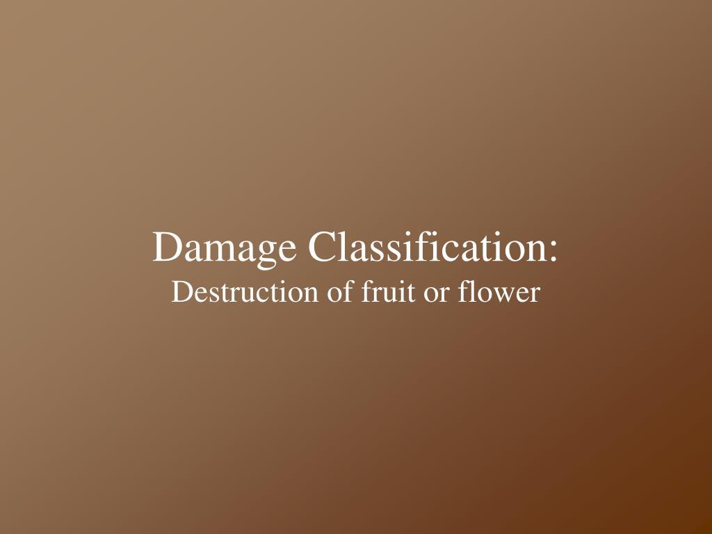 Damage Classification: