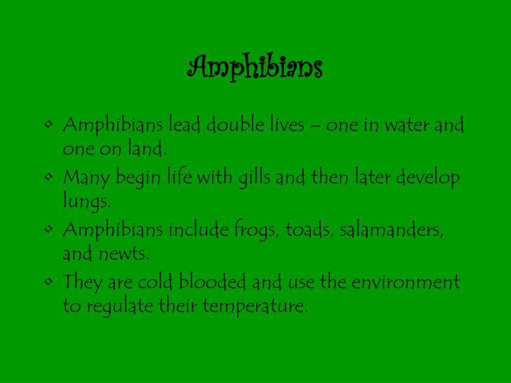 Amphibians2