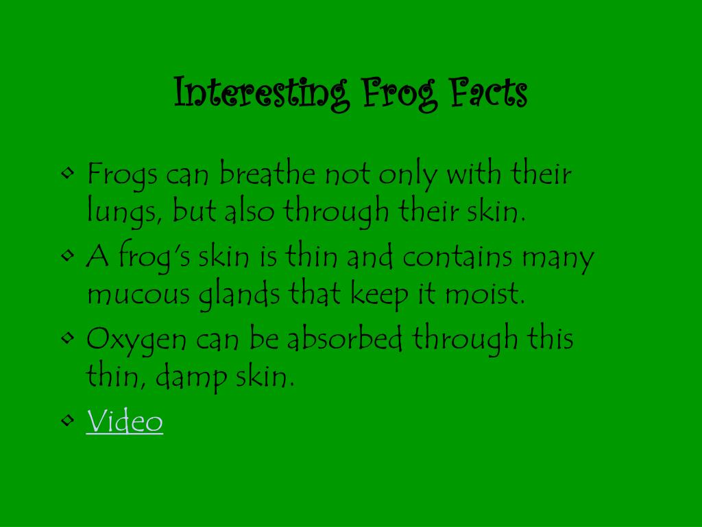 Interesting Frog Facts