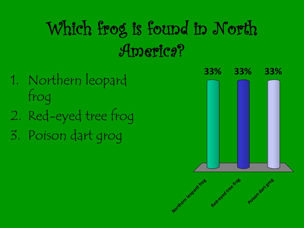 Which frog is found in North America?