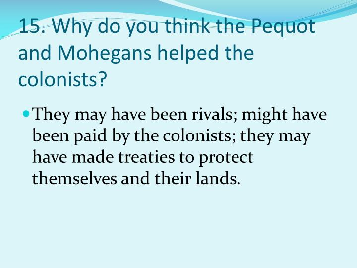 15. Why do you think the Pequot and Mohegans helped the colonists?
