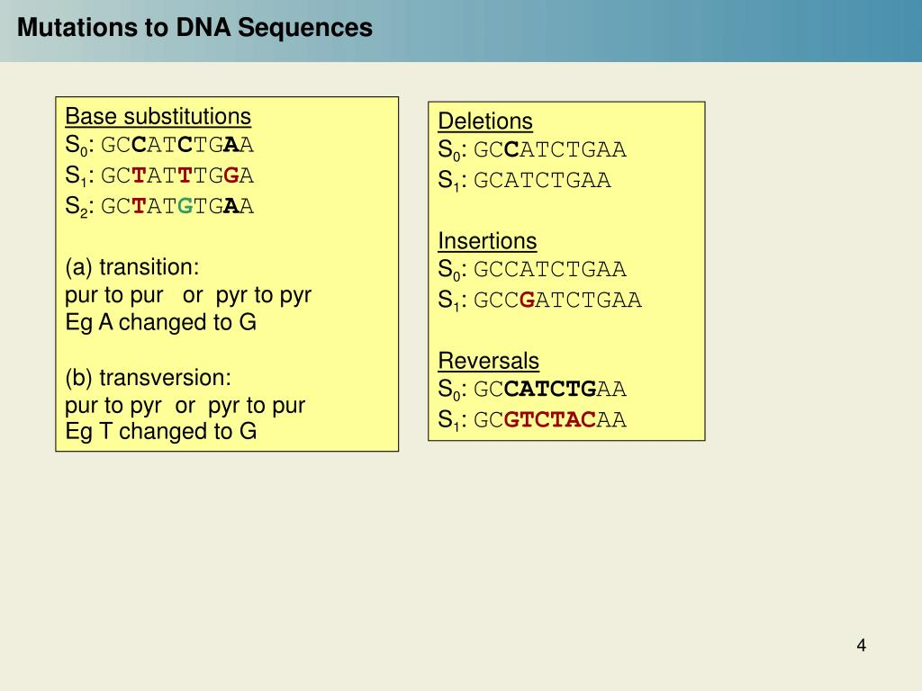 Mutations to DNA Sequences