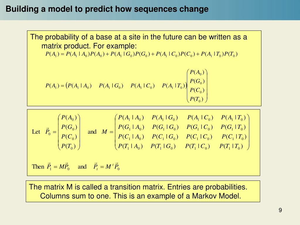 The probability of a base at a site in the future can be written as a matrix product. For example: