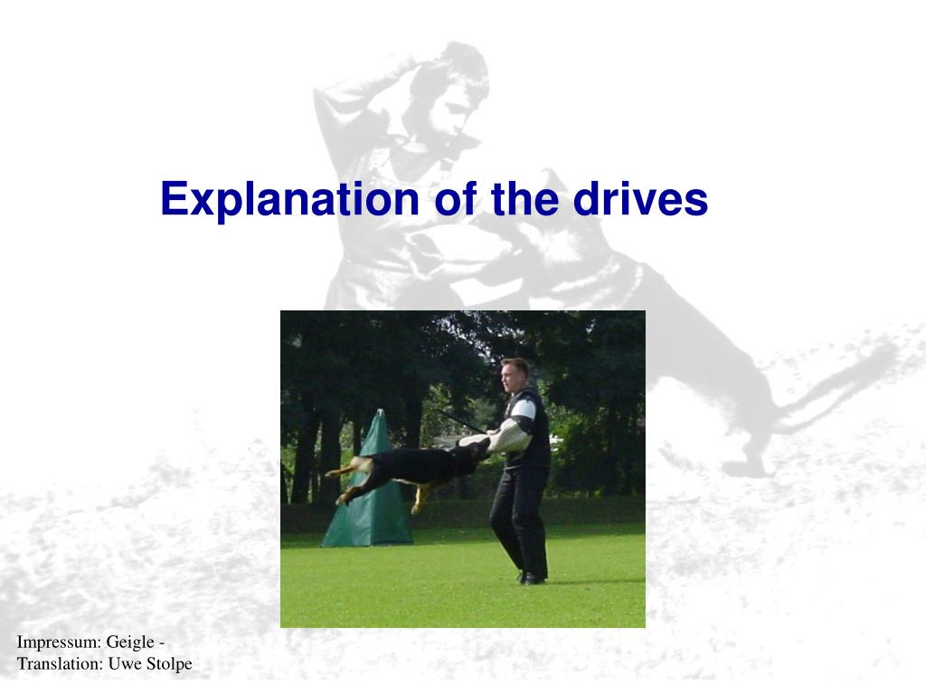 Explanation of the drives