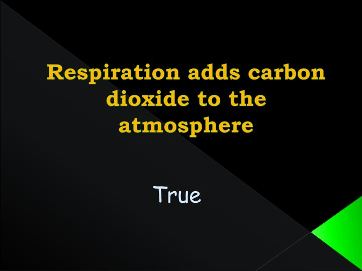 Respiration adds carbon dioxide to the atmosphere