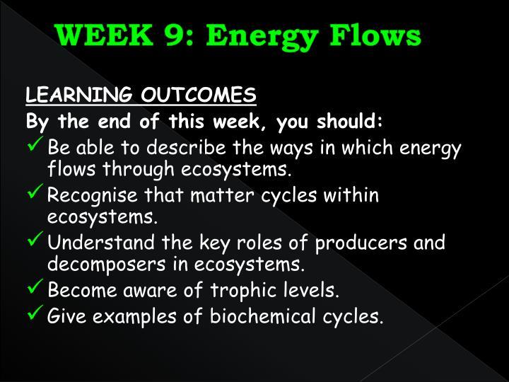 Week 9 energy flows1