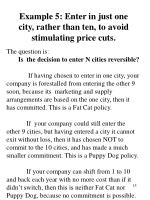 example 5 enter in just one city rather than ten to avoid stimulating price cuts