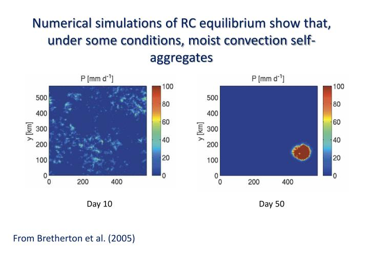 Numerical simulations of RC equilibrium show that, under some conditions, moist convection self-aggregates
