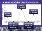 8 months of the 1918 spanish flu
