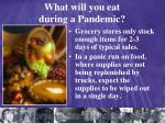 what will you eat during a pandemic