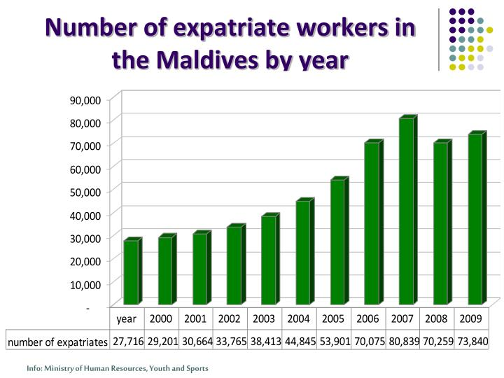 Number of expatriate workers in the Maldives by year