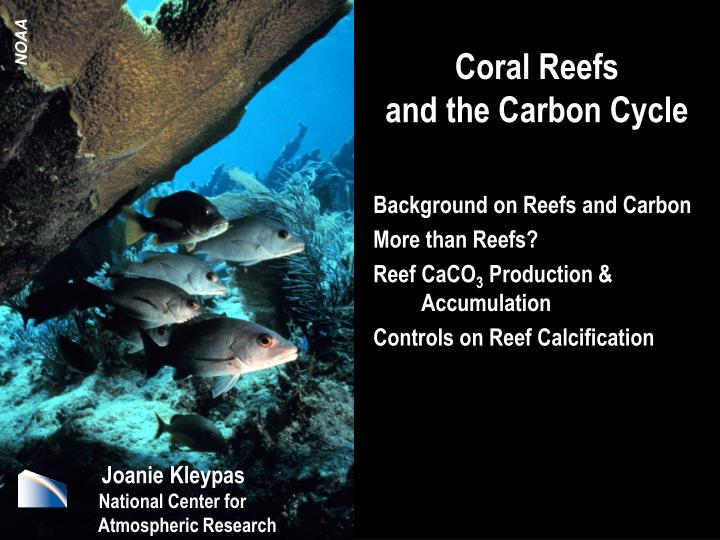 Ppt Coral Reefs And The Carbon Cycle Powerpoint