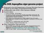 the doe aspergillus niger genome project