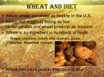 wheat and diet