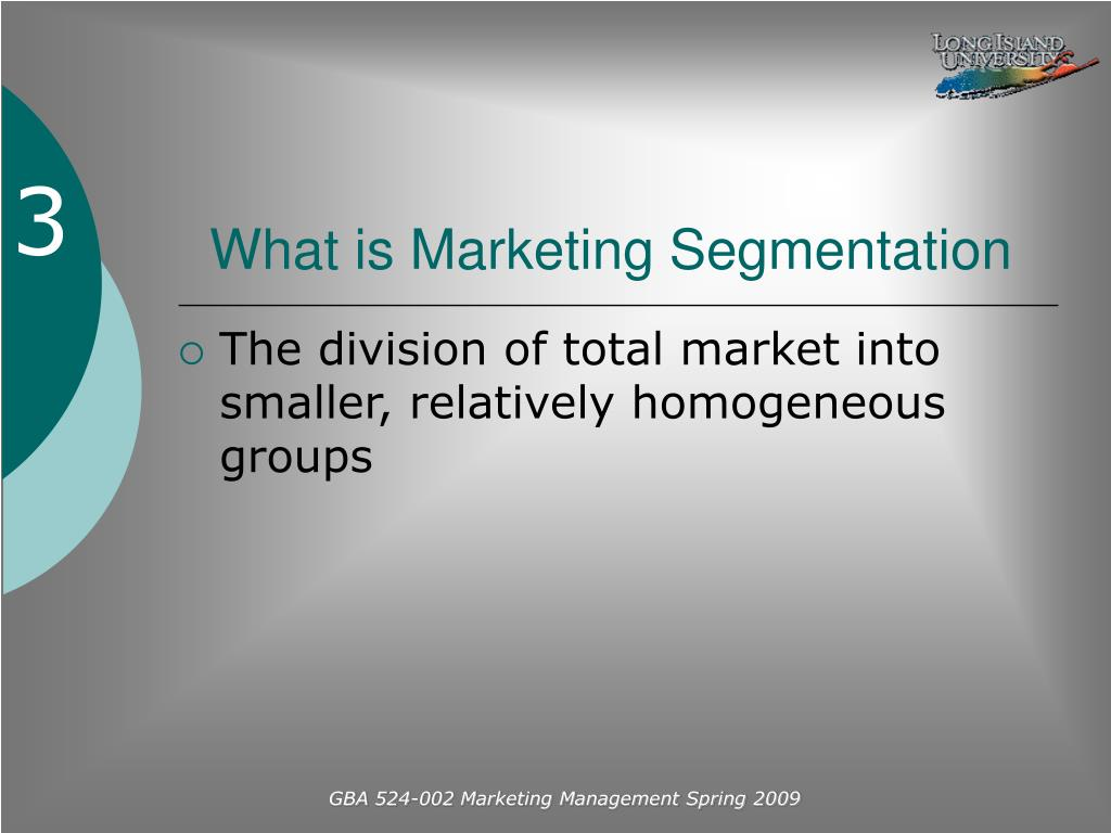 What is Marketing Segmentation