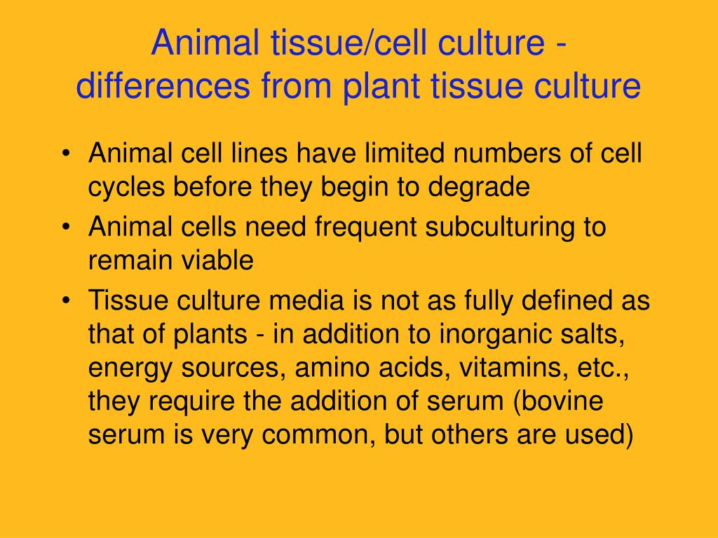 PPT - Lecture 8 Plant Tissue Culture & Applications