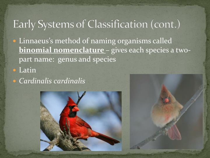 Early Systems of Classification (cont.)