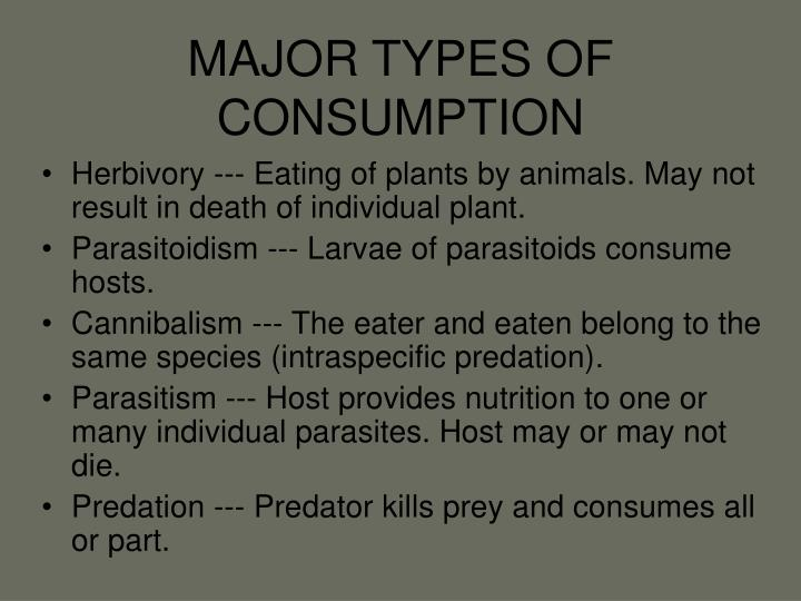 Major types of consumption