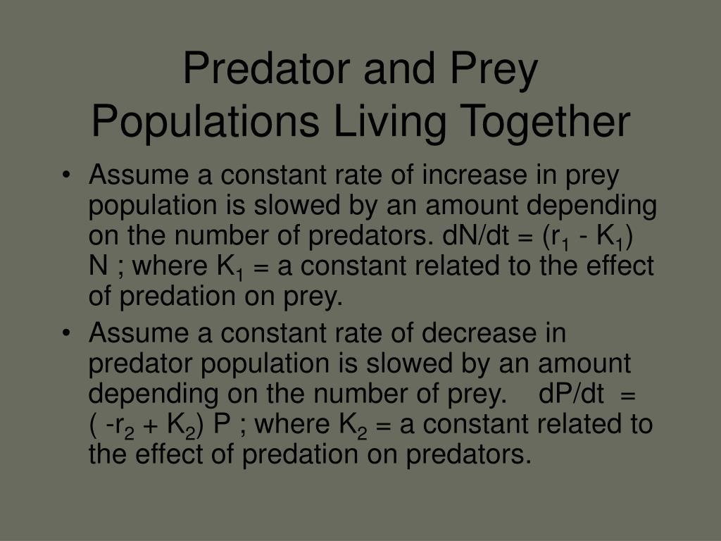 Predator and Prey Populations Living Together