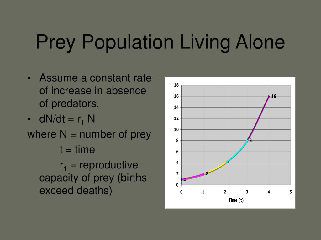 Prey Population Living Alone