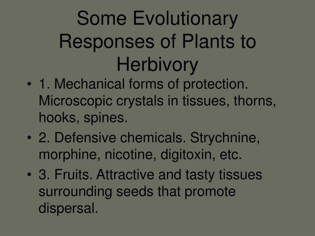 Some Evolutionary Responses of Plants to Herbivory