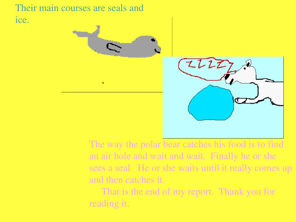 Their main courses are seals and ice.