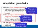 adaptation granularity