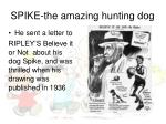 spike the amazing hunting dog