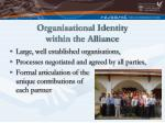 organisational identity within the alliance