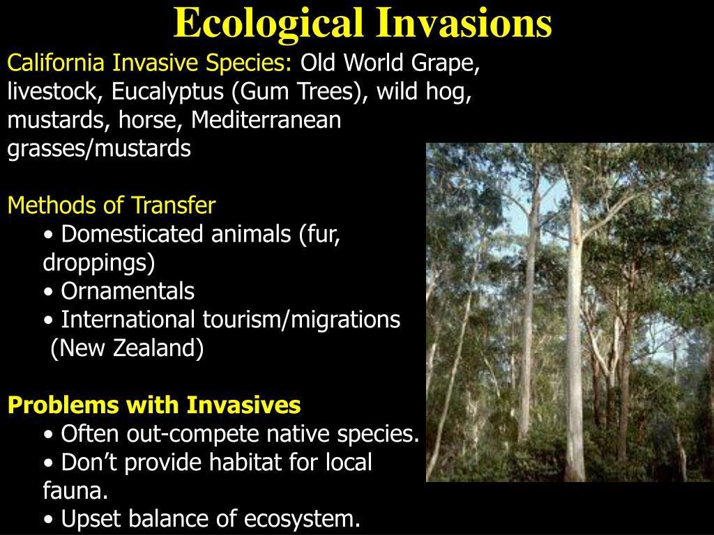 California Invasive Species: