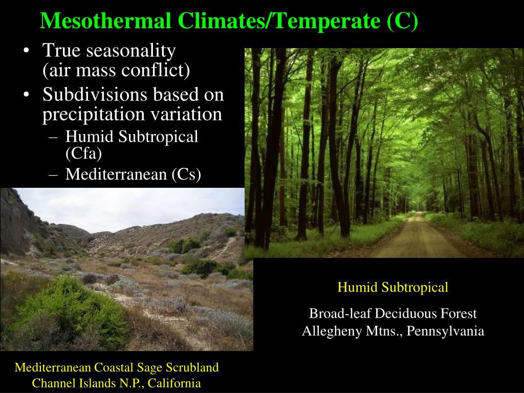 Mesothermal Climates/Temperate (C)