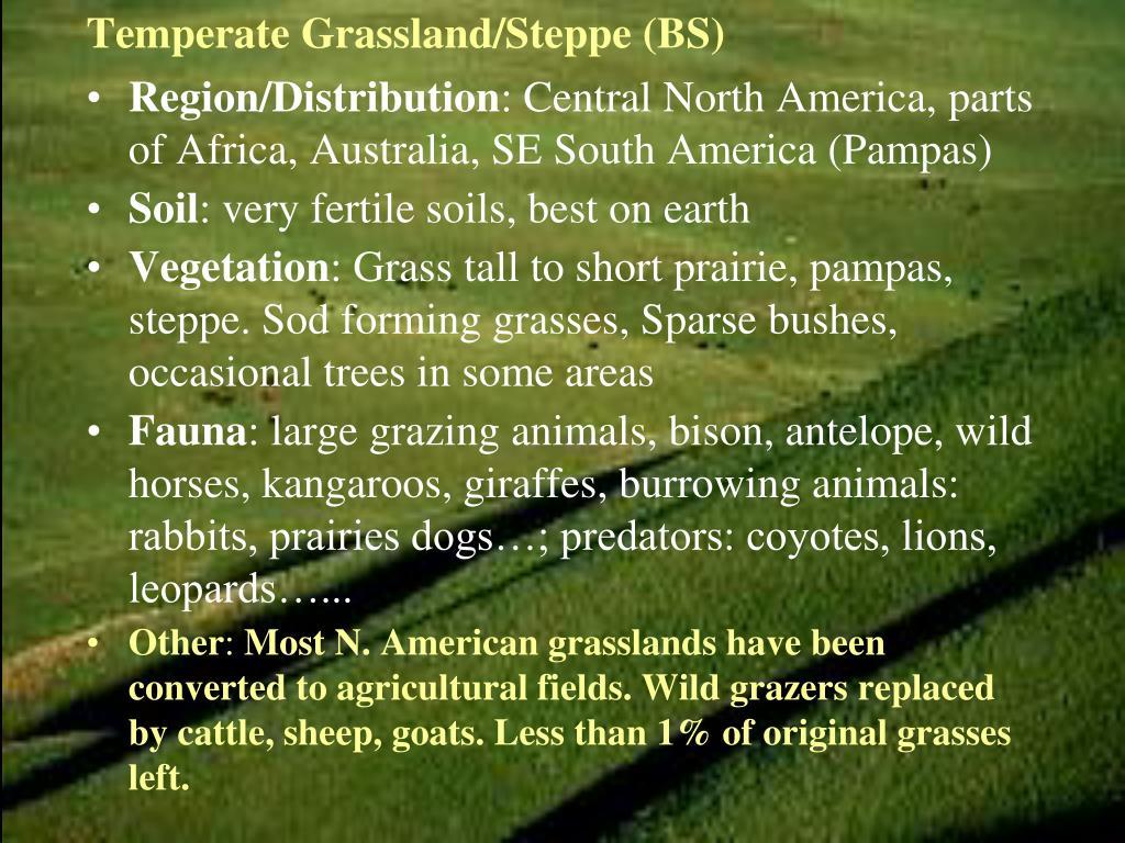 Temperate Grassland/Steppe (BS)