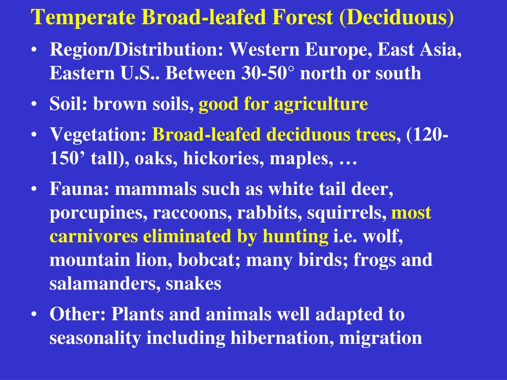 Temperate Broad-leafed Forest (Deciduous)