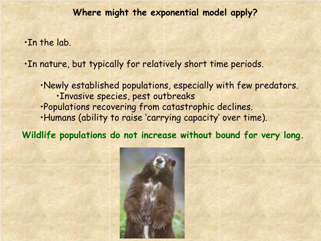 Where might the exponential model apply?