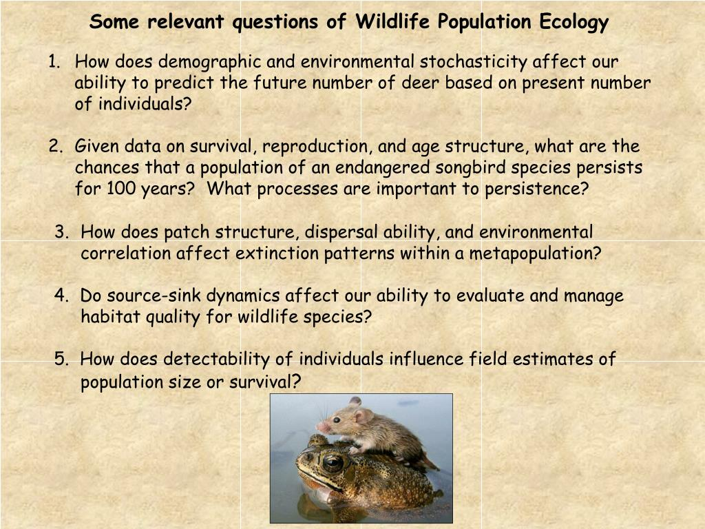 Some relevant questions of Wildlife Population Ecology