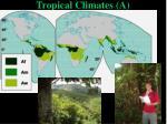 tropical climates a
