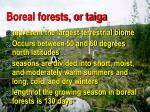 boreal forests or taiga