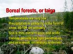 boreal forests or taiga95