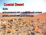 coastal desert28