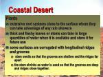 coastal desert29