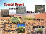 coastal desert30