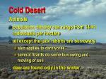 cold desert38