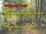 temperate forest86
