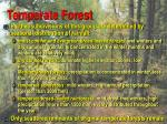 temperate forest91