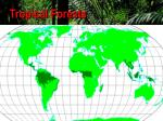 tropical forests74