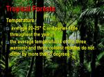 tropical forests75
