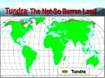 tundra the not so barren land61